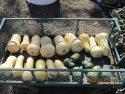 A wagonload of butternut squash.