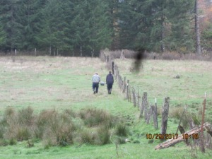 Two men roll out barb wire along a pasture fence.